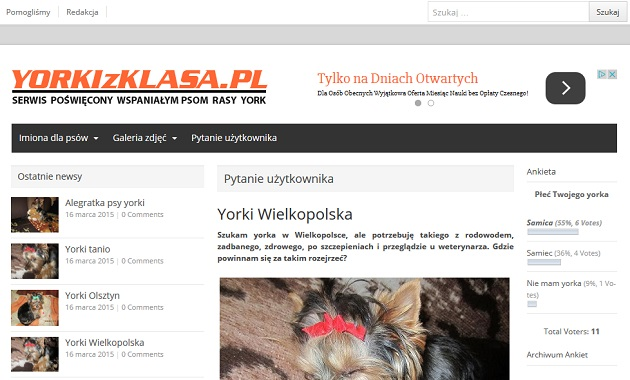 Yorki - Yorkizklasa.pl